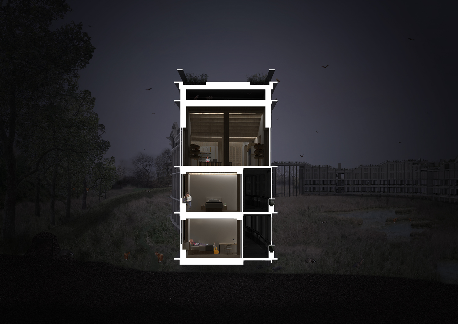 Typical section – night – the window shutters prevent light pollution from affecting the sensitive ecology