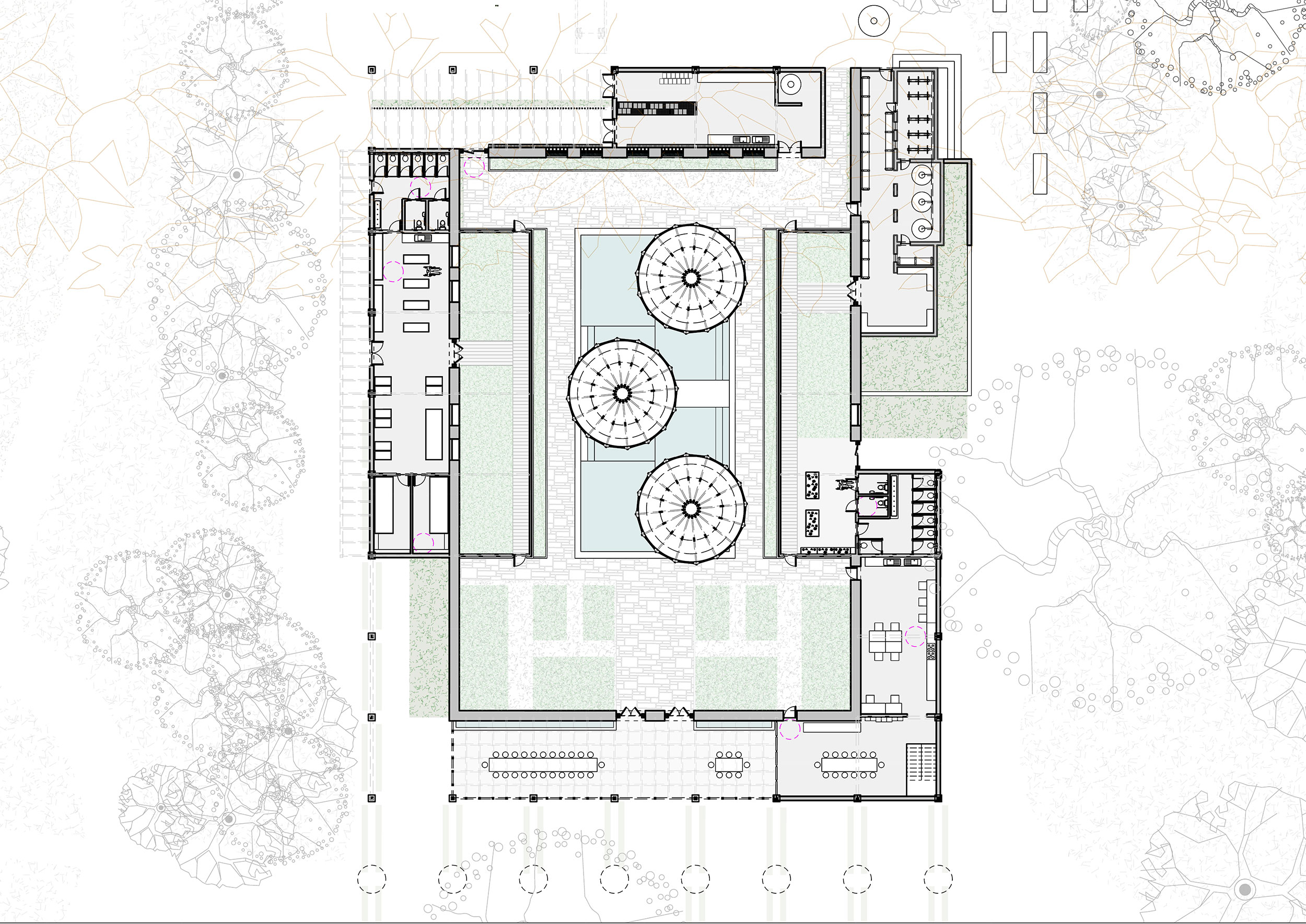 Ground level plan of the proposed educational facilities of Clissold Park, where various stages of the growing process are integrated with community facilities