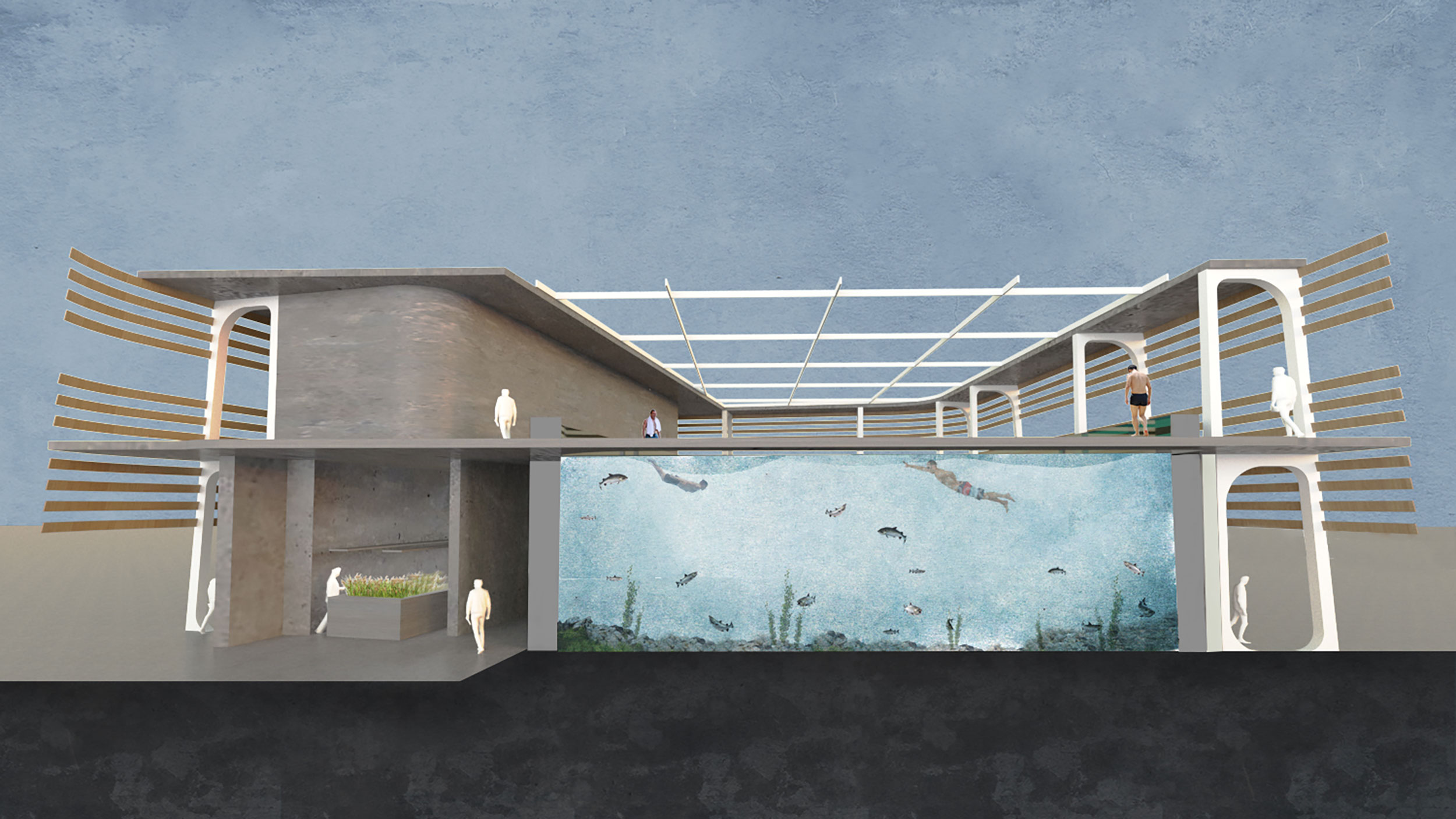 Station 04 section: swimming with salmon