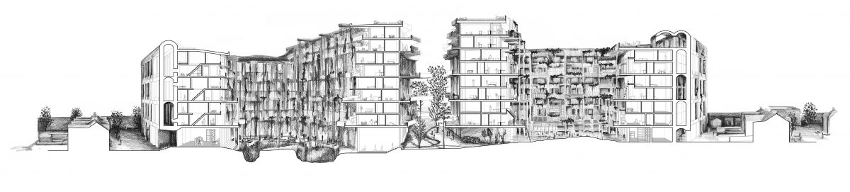 Site Section — residential architecture generated through a landscape-led approach.