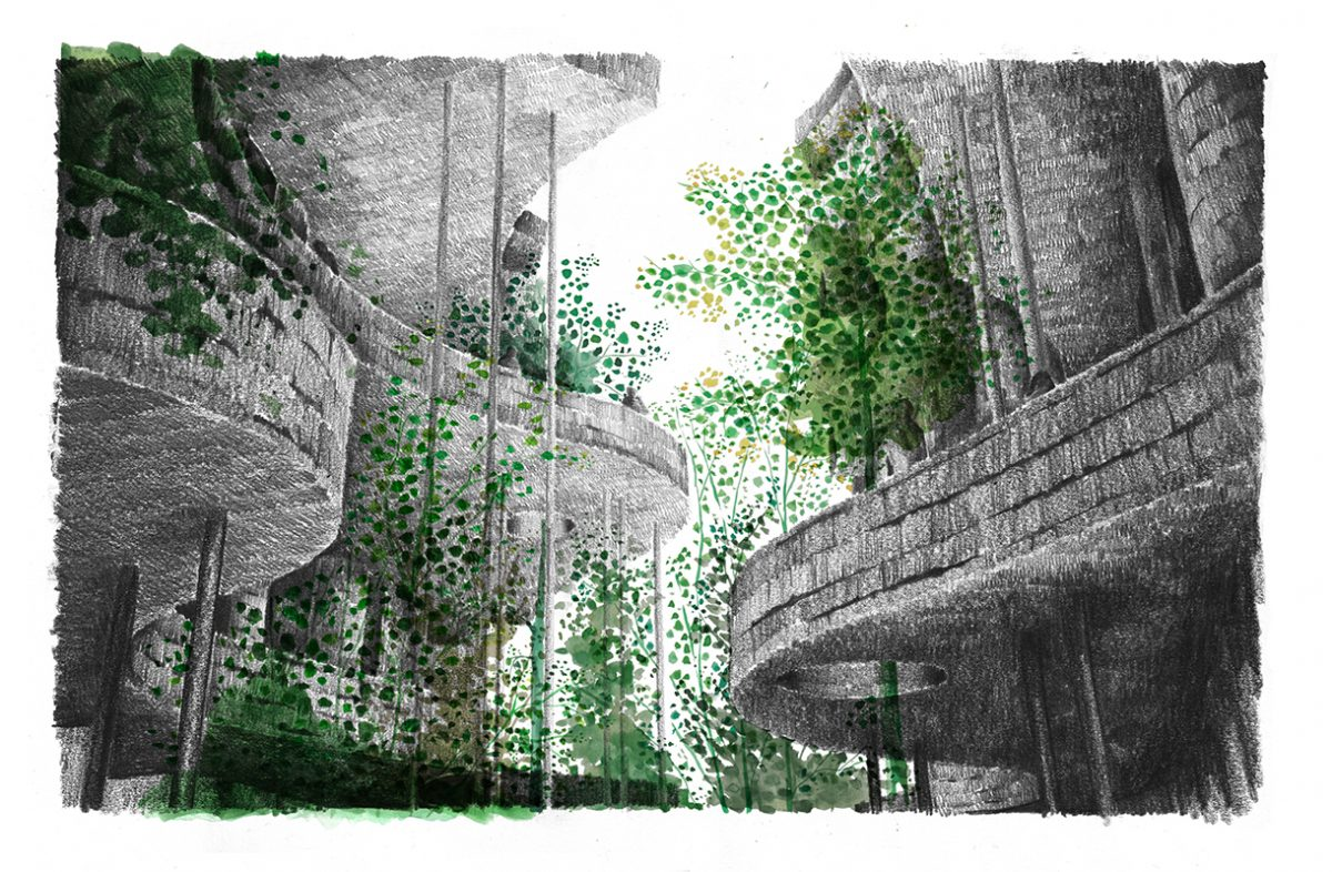 Woodland walk — architecture that responds to the growth of trees and emulates the feeling of a forest.