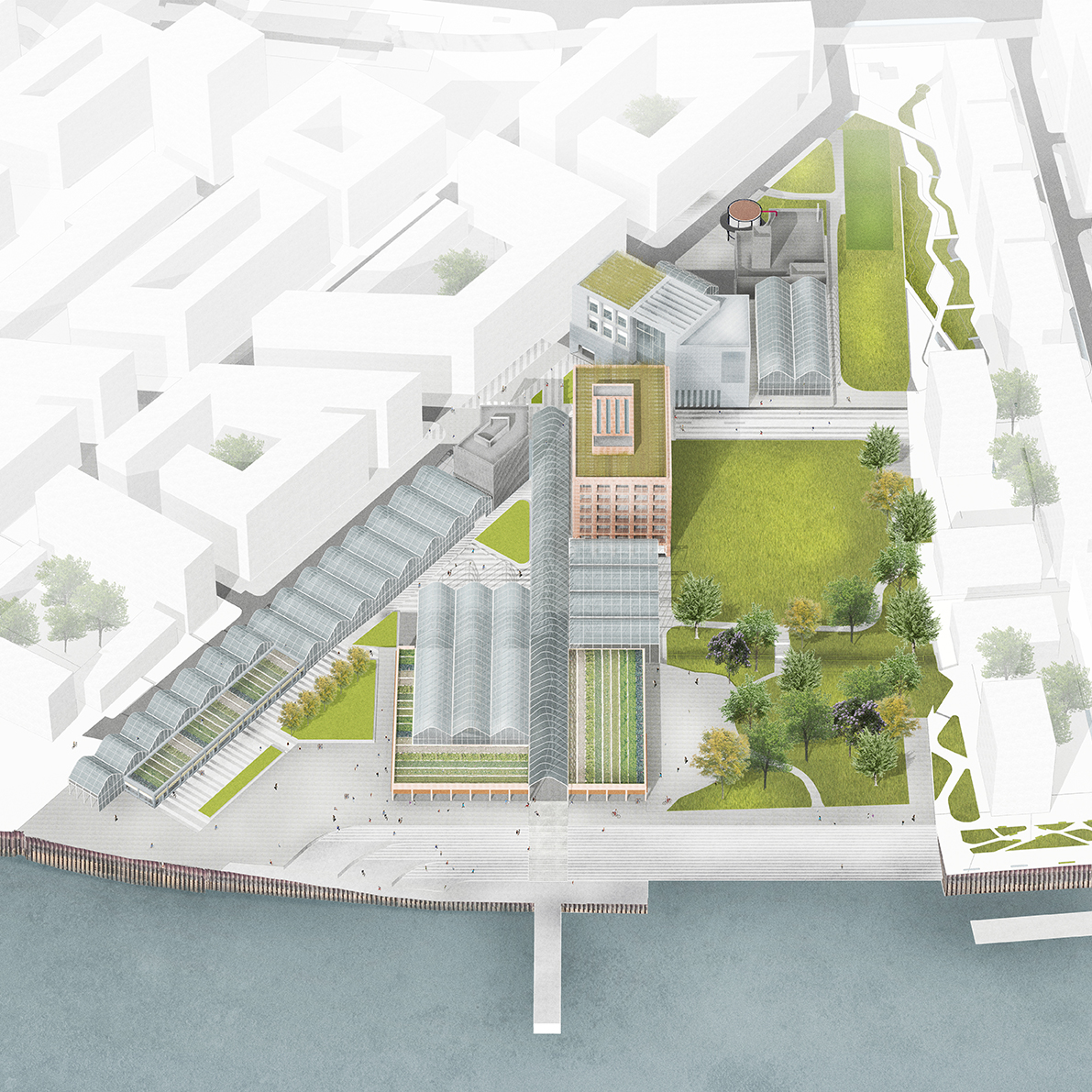 An overview of the campus on the banks of the River. An axial glasshouse acts as a public promenade, connecting the proposed main square with the waterfront and culminating in a working fishing pier.