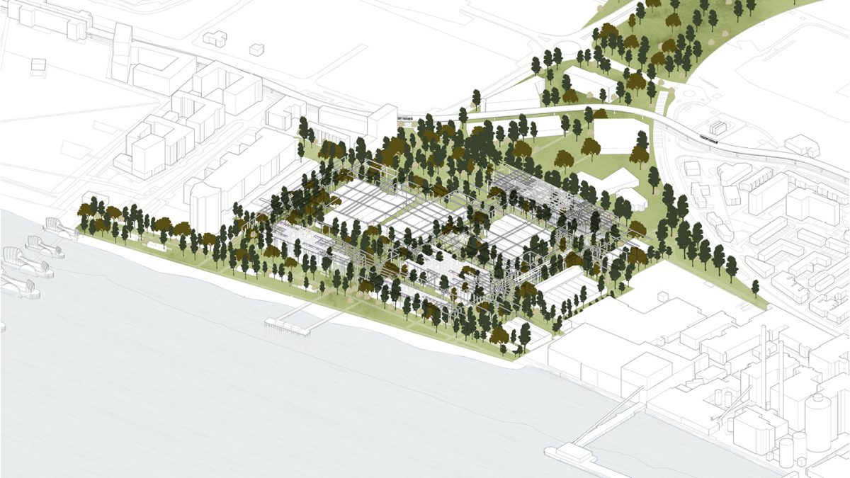 A designed wilderness of forest and workspace, creating a public park for Newham and unlocking a new Thames waterfront.