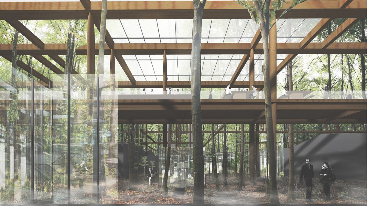 Heated outdoor tables and desk space can be used under the shelter of a high level glass canopy. Below, the workspace buildings blend, almost imperceptibly, into the forest.