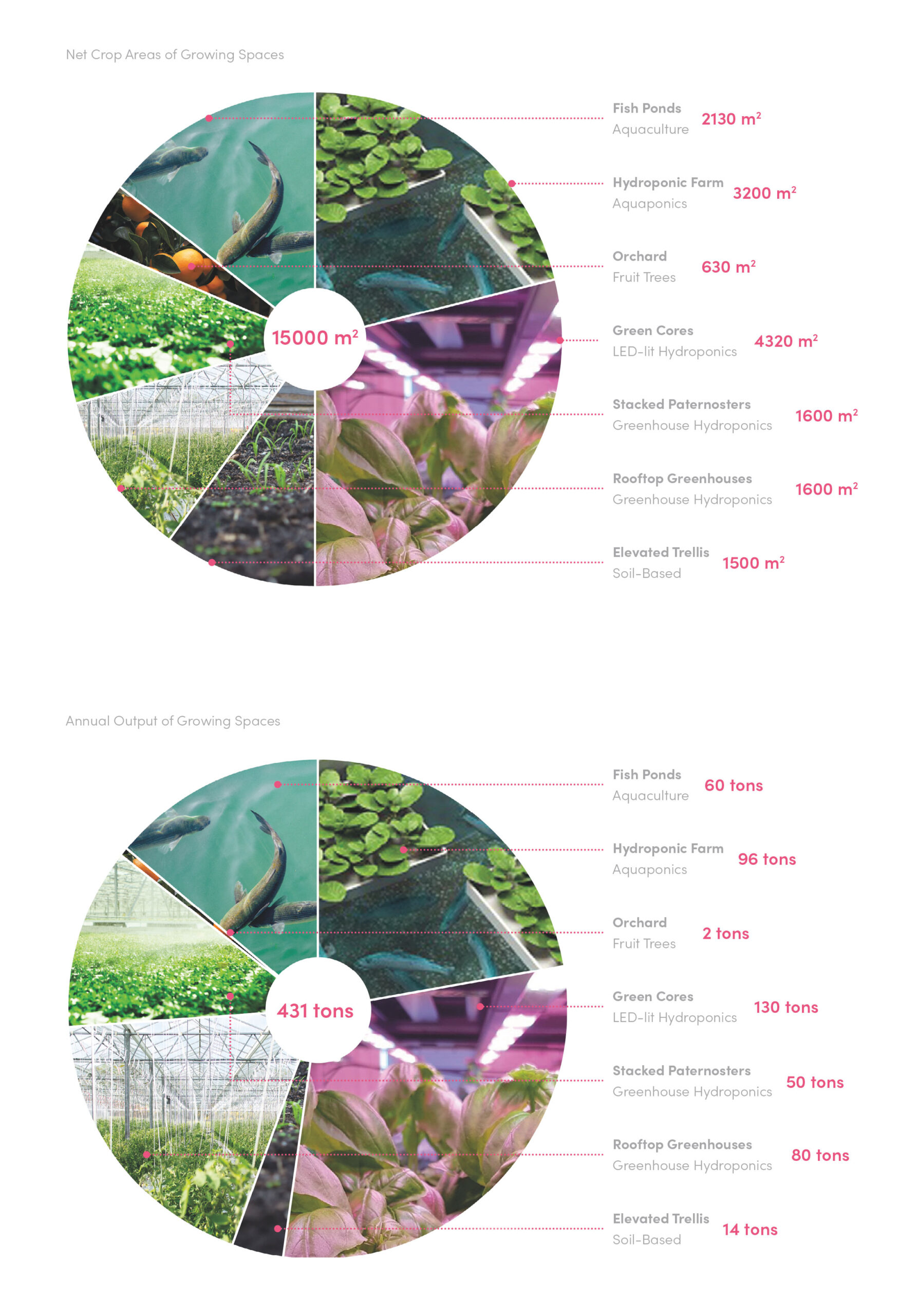 The combined crop area of the scheme amounts to 15,000sqm, producing 430 tons of fresh produce every year.